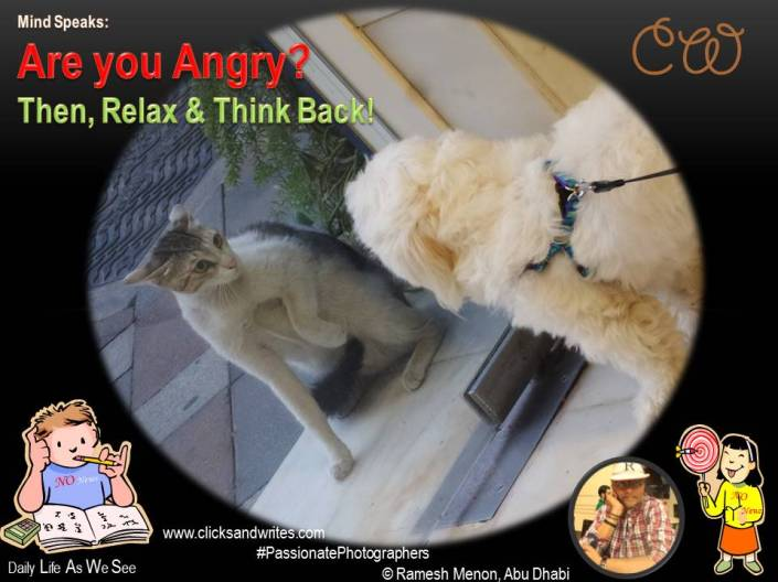 Mind Speaks - Are You Angry - Then its time to relax